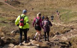 Highlands Fling Run